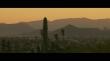 трейлер к фильму Козы
