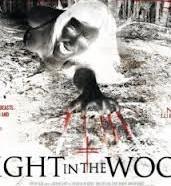Ночь в лесу (A Night in the Woods)