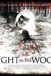 постер Ночь в лесу,A Night in the Woods