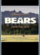 Медведи (Bears)