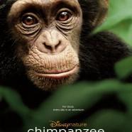 Шимпанзе (Chimpanzee)