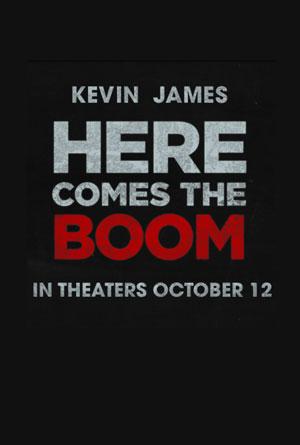 постер Толстяк на ринге,Here Comes the Boom