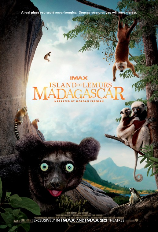 постер Остров лемуров: Мадагаскар,Island of Lemurs: Madagascar