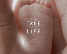 Древо жизни (The Tree of Life)