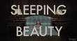 фильм Спящая красавица