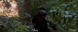 кадры из фильма Голодные игры