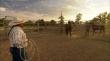 трейлер к фильму Wild Horse, Wild Ride